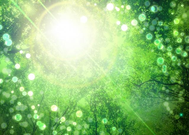 気功はレイキヒーリングとは違う生命のエネルギー